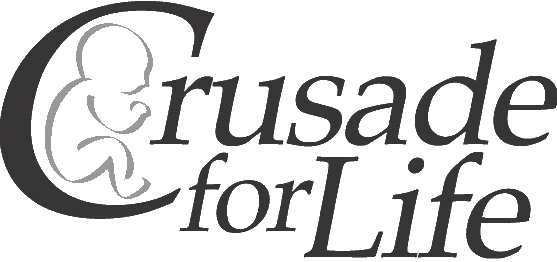 CFL-Logo.png (557×262)